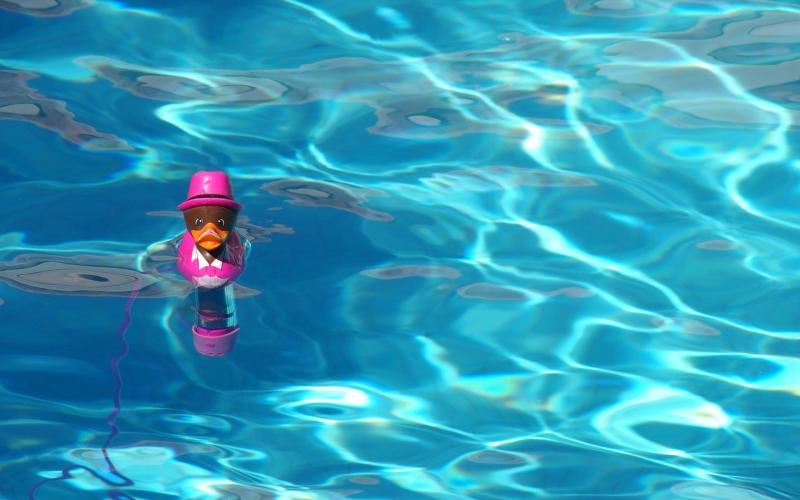 Außenanlage #24: Der Swimmingpool